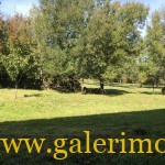 maison lot ensemble immobilier type de bien for sale Chemin de Saint Jacques de Compostelle